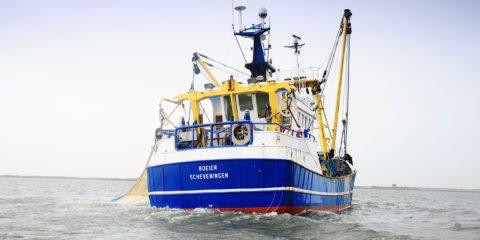 Visserij officier alle vissersschepen S4/W4 STC mbo college