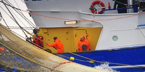 Mbo-opleiding Stuurman werktuigkundige vissersschepen SW5 | STC mbo college